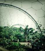 Биосферный комплекс Saudi Biome