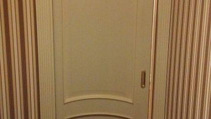 Раздвижная дверь пенал от Юнион