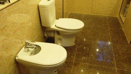 Отделка и ремонт туалета в коттедже